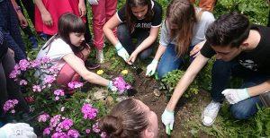 Trồng cây để môi trường xanh, sạch, đẹp - Phế liệu Quang Đạt