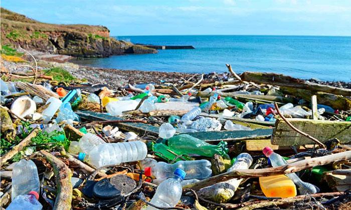 Tình trạng ô nhiễm rác thải nhưạ